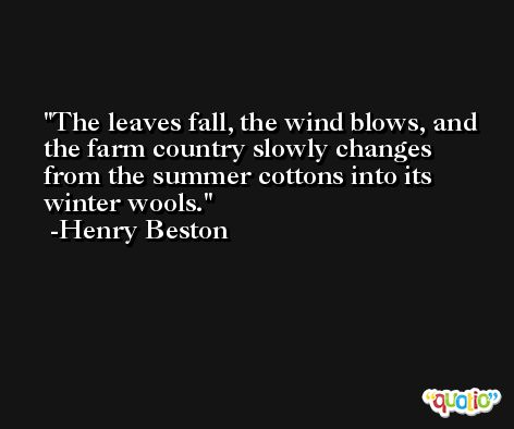 The leaves fall, the wind blows, and the farm country slowly changes from the summer cottons into its winter wools. -Henry Beston