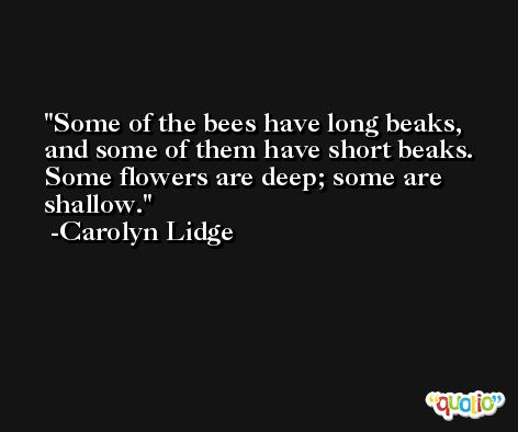 Some of the bees have long beaks, and some of them have short beaks. Some flowers are deep; some are shallow. -Carolyn Lidge
