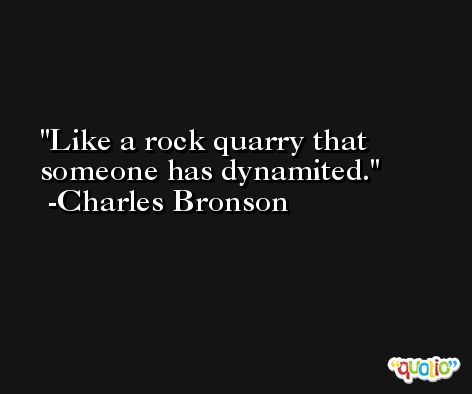 Like a rock quarry that someone has dynamited. -Charles Bronson