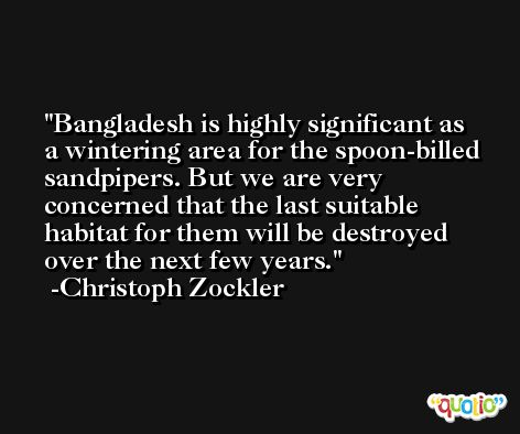 Bangladesh is highly significant as a wintering area for the spoon-billed sandpipers. But we are very concerned that the last suitable habitat for them will be destroyed over the next few years. -Christoph Zockler