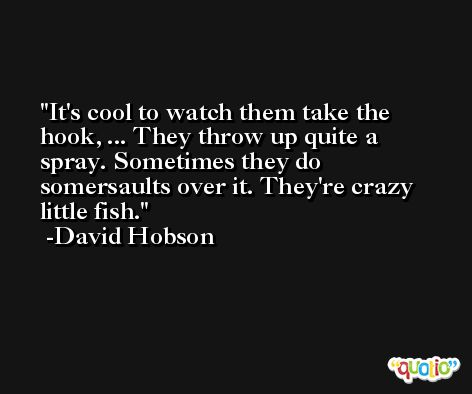 It's cool to watch them take the hook, ... They throw up quite a spray. Sometimes they do somersaults over it. They're crazy little fish. -David Hobson