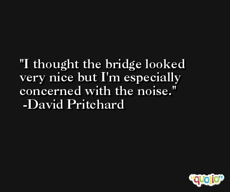 I thought the bridge looked very nice but I'm especially concerned with the noise. -David Pritchard