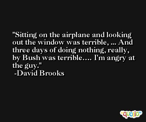 Sitting on the airplane and looking out the window was terrible, ... And three days of doing nothing, really, by Bush was terrible…. I'm angry at the guy. -David Brooks