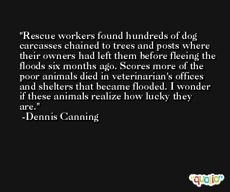 Rescue workers found hundreds of dog carcasses chained to trees and posts where their owners had left them before fleeing the floods six months ago. Scores more of the poor animals died in veterinarian's offices and shelters that became flooded. I wonder if these animals realize how lucky they are. -Dennis Canning