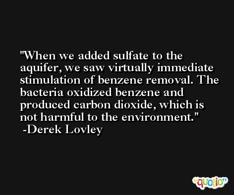 When we added sulfate to the aquifer, we saw virtually immediate stimulation of benzene removal. The bacteria oxidized benzene and produced carbon dioxide, which is not harmful to the environment. -Derek Lovley