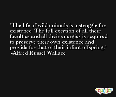 The life of wild animals is a struggle for existence. The full exertion of all their faculties and all their energies is required to preserve their own existence and provide for that of their infant offspring. -Alfred Russel Wallace