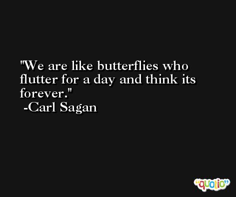 We are like butterflies who flutter for a day and think its forever. -Carl Sagan