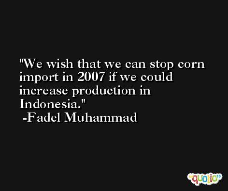 We wish that we can stop corn import in 2007 if we could increase production in Indonesia. -Fadel Muhammad
