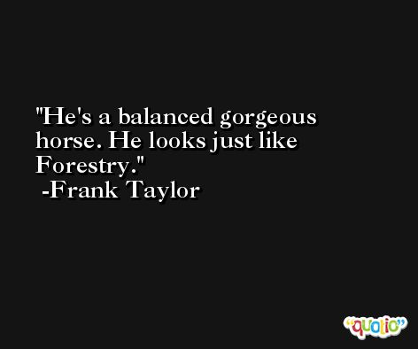 He's a balanced gorgeous horse. He looks just like Forestry. -Frank Taylor