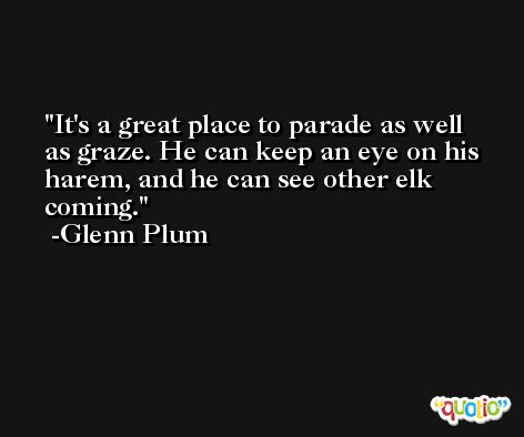 It's a great place to parade as well as graze. He can keep an eye on his harem, and he can see other elk coming. -Glenn Plum