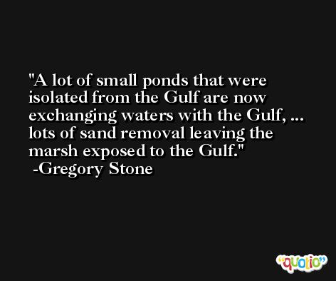 A lot of small ponds that were isolated from the Gulf are now exchanging waters with the Gulf, ... lots of sand removal leaving the marsh exposed to the Gulf. -Gregory Stone
