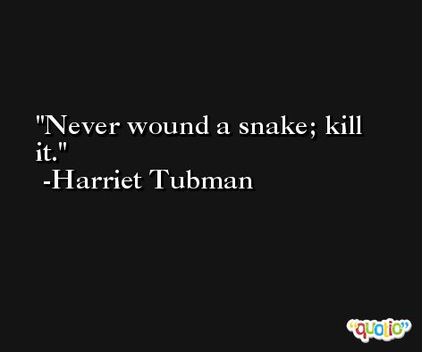 Never wound a snake; kill it. -Harriet Tubman