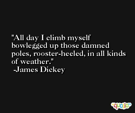 All day I climb myself bowlegged up those damned poles, rooster-heeled, in all kinds of weather. -James Dickey