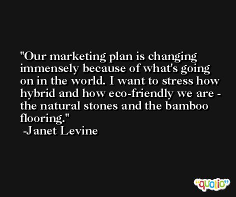 Our marketing plan is changing immensely because of what's going on in the world. I want to stress how hybrid and how eco-friendly we are - the natural stones and the bamboo flooring. -Janet Levine