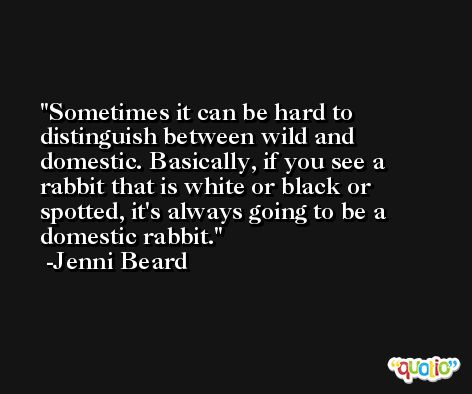 Sometimes it can be hard to distinguish between wild and domestic. Basically, if you see a rabbit that is white or black or spotted, it's always going to be a domestic rabbit. -Jenni Beard