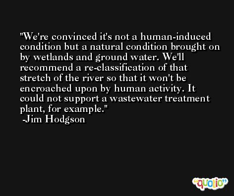 We're convinced it's not a human-induced condition but a natural condition brought on by wetlands and ground water. We'll recommend a re-classification of that stretch of the river so that it won't be encroached upon by human activity. It could not support a wastewater treatment plant, for example. -Jim Hodgson