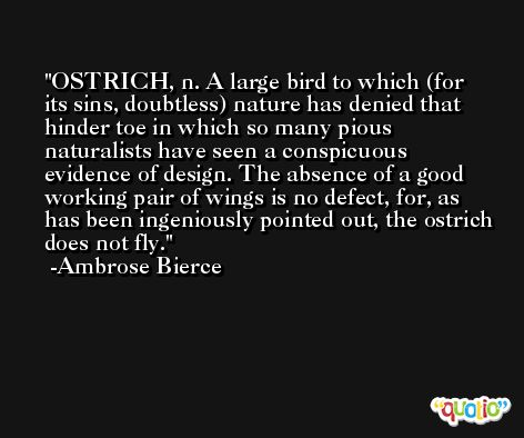 OSTRICH, n. A large bird to which (for its sins, doubtless) nature has denied that hinder toe in which so many pious naturalists have seen a conspicuous evidence of design. The absence of a good working pair of wings is no defect, for, as has been ingeniously pointed out, the ostrich does not fly. -Ambrose Bierce
