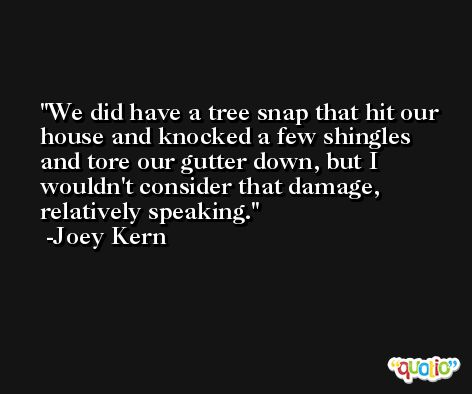 We did have a tree snap that hit our house and knocked a few shingles and tore our gutter down, but I wouldn't consider that damage, relatively speaking. -Joey Kern