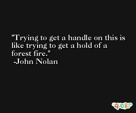 Trying to get a handle on this is like trying to get a hold of a forest fire. -John Nolan