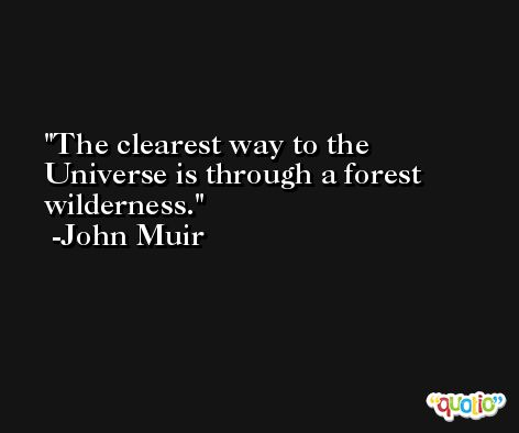 The clearest way to the Universe is through a forest wilderness. -John Muir