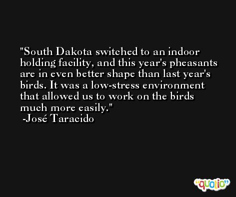 South Dakota switched to an indoor holding facility, and this year's pheasants are in even better shape than last year's birds. It was a low-stress environment that allowed us to work on the birds much more easily. -José Taracido