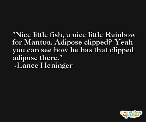 Nice little fish, a nice little Rainbow for Mantua. Adipose clipped? Yeah you can see how he has that clipped adipose there. -Lance Heninger