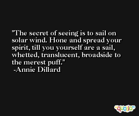 The secret of seeing is to sail on solar wind. Hone and spread your spirit, till you yourself are a sail, whetted, translucent, broadside to the merest puff. -Annie Dillard