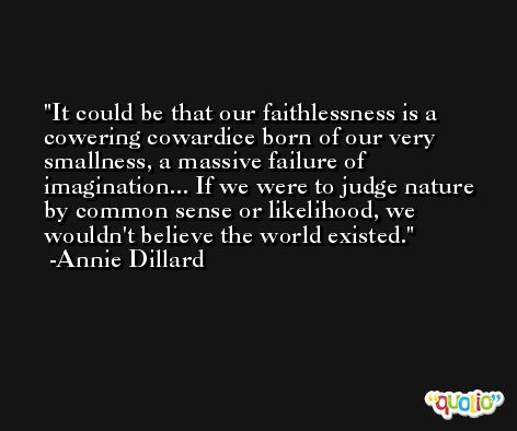 It could be that our faithlessness is a cowering cowardice born of our very smallness, a massive failure of imagination... If we were to judge nature by common sense or likelihood, we wouldn't believe the world existed. -Annie Dillard