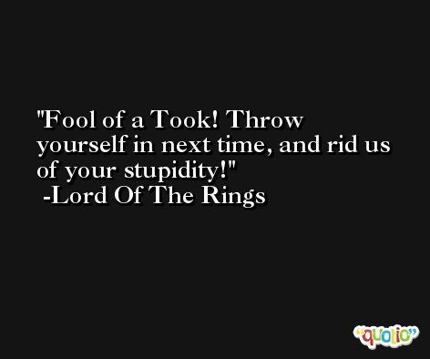 Fool of a Took! Throw yourself in next time, and rid us of your stupidity! -Lord Of The Rings