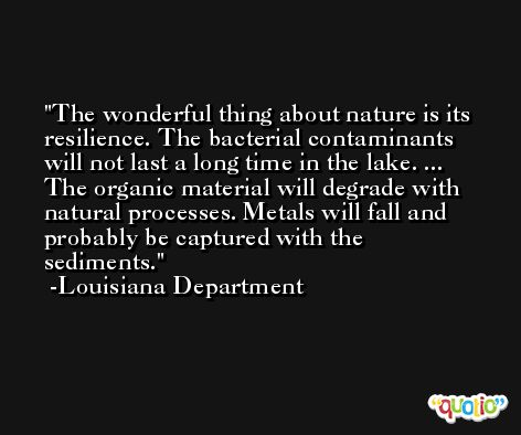 The wonderful thing about nature is its resilience. The bacterial contaminants will not last a long time in the lake. ... The organic material will degrade with natural processes. Metals will fall and probably be captured with the sediments. -Louisiana Department