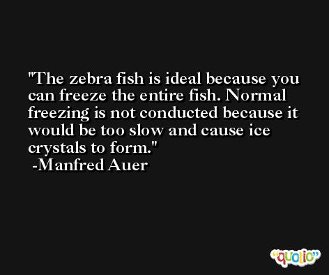 The zebra fish is ideal because you can freeze the entire fish. Normal freezing is not conducted because it would be too slow and cause ice crystals to form. -Manfred Auer