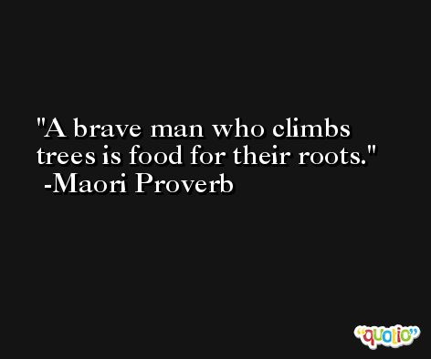 A brave man who climbs trees is food for their roots. -Maori Proverb