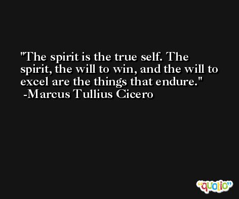 The spirit is the true self. The spirit, the will to win, and the will to excel are the things that endure. -Marcus Tullius Cicero