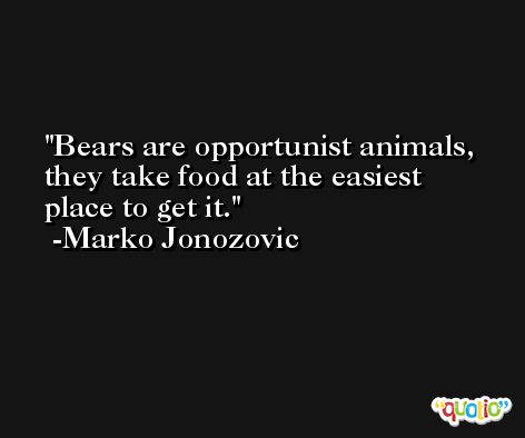 Bears are opportunist animals, they take food at the easiest place to get it. -Marko Jonozovic