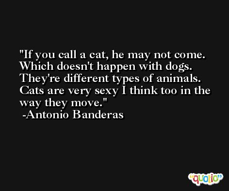 If you call a cat, he may not come. Which doesn't happen with dogs. They're different types of animals. Cats are very sexy I think too in the way they move. -Antonio Banderas