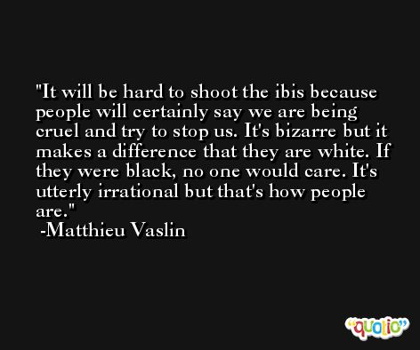 It will be hard to shoot the ibis because people will certainly say we are being cruel and try to stop us. It's bizarre but it makes a difference that they are white. If they were black, no one would care. It's utterly irrational but that's how people are. -Matthieu Vaslin