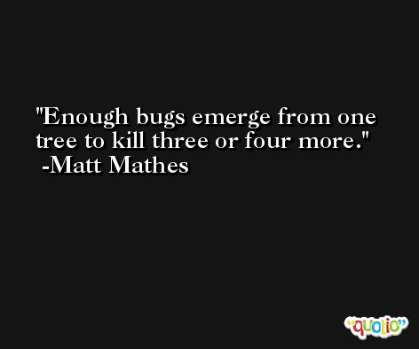 Enough bugs emerge from one tree to kill three or four more. -Matt Mathes