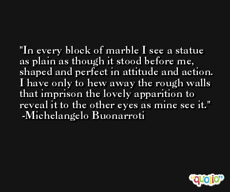 In every block of marble I see a statue as plain as though it stood before me, shaped and perfect in attitude and action. I have only to hew away the rough walls that imprison the lovely apparition to reveal it to the other eyes as mine see it. -Michelangelo Buonarroti