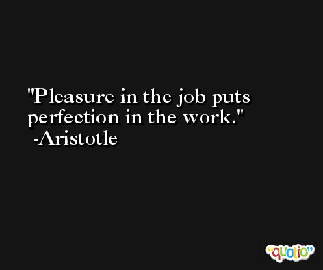 Pleasure in the job puts perfection in the work. -Aristotle