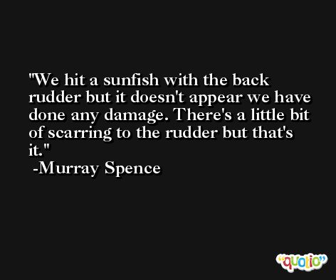 We hit a sunfish with the back rudder but it doesn't appear we have done any damage. There's a little bit of scarring to the rudder but that's it. -Murray Spence