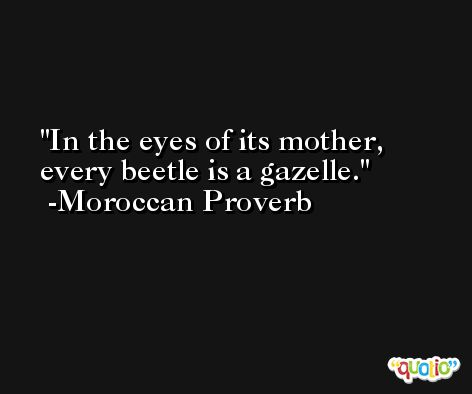 In the eyes of its mother, every beetle is a gazelle. -Moroccan Proverb