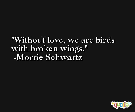 Without love, we are birds with broken wings. -Morrie Schwartz