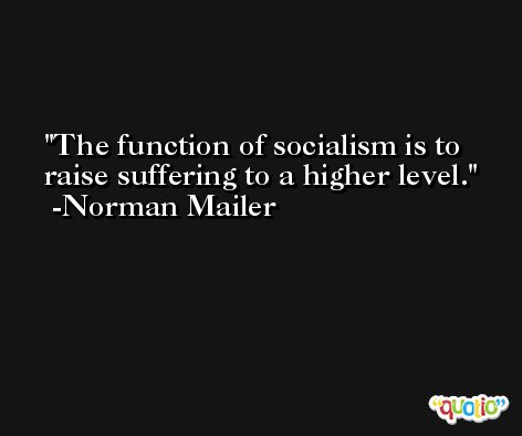 The function of socialism is to raise suffering to a higher level. -Norman Mailer