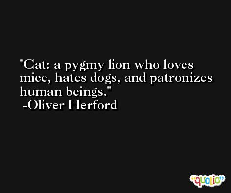 Cat: a pygmy lion who loves mice, hates dogs, and patronizes human beings. -Oliver Herford