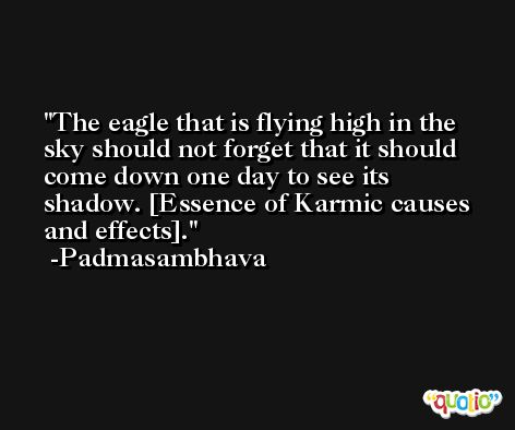The eagle that is flying high in the sky should not forget that it should come down one day to see its shadow. [Essence of Karmic causes and effects]. -Padmasambhava