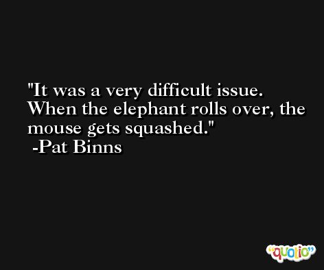It was a very difficult issue. When the elephant rolls over, the mouse gets squashed. -Pat Binns
