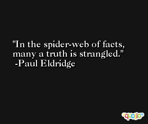 In the spider-web of facts, many a truth is strangled. -Paul Eldridge