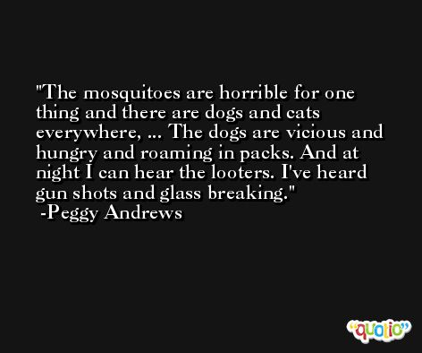The mosquitoes are horrible for one thing and there are dogs and cats everywhere, ... The dogs are vicious and hungry and roaming in packs. And at night I can hear the looters. I've heard gun shots and glass breaking. -Peggy Andrews
