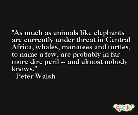 As much as animals like elephants are currently under threat in Central Africa, whales, manatees and turtles, to name a few, are probably in far more dire peril -- and almost nobody knows. -Peter Walsh