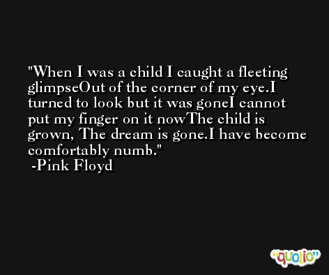 When I was a child I caught a fleeting glimpseOut of the corner of my eye.I turned to look but it was goneI cannot put my finger on it nowThe child is grown, The dream is gone.I have become comfortably numb. -Pink Floyd